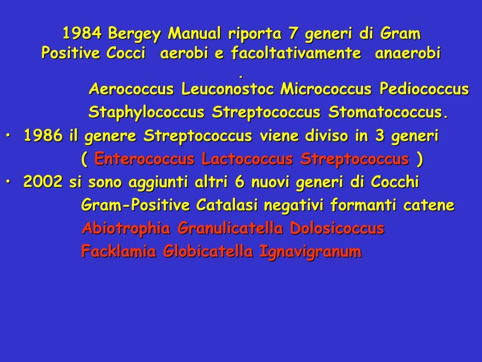 1984 Bergey Manual riporta 7 generi di Gram Positive Cocci aerobi e facoltativamente anaerobi. Aerococcus Leuconostoc Micrococcus Pediococcus Aerococc
