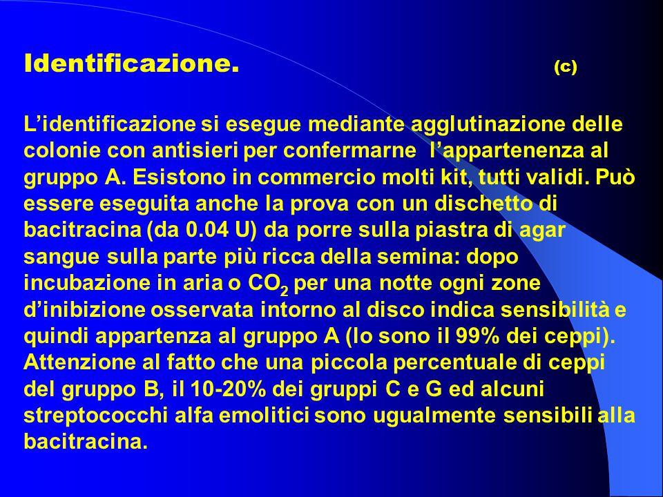 Identificazione. (c) L'identificazione si esegue mediante agglutinazione delle colonie con antisieri per confermarne l'appartenenza al gruppo A. Esist