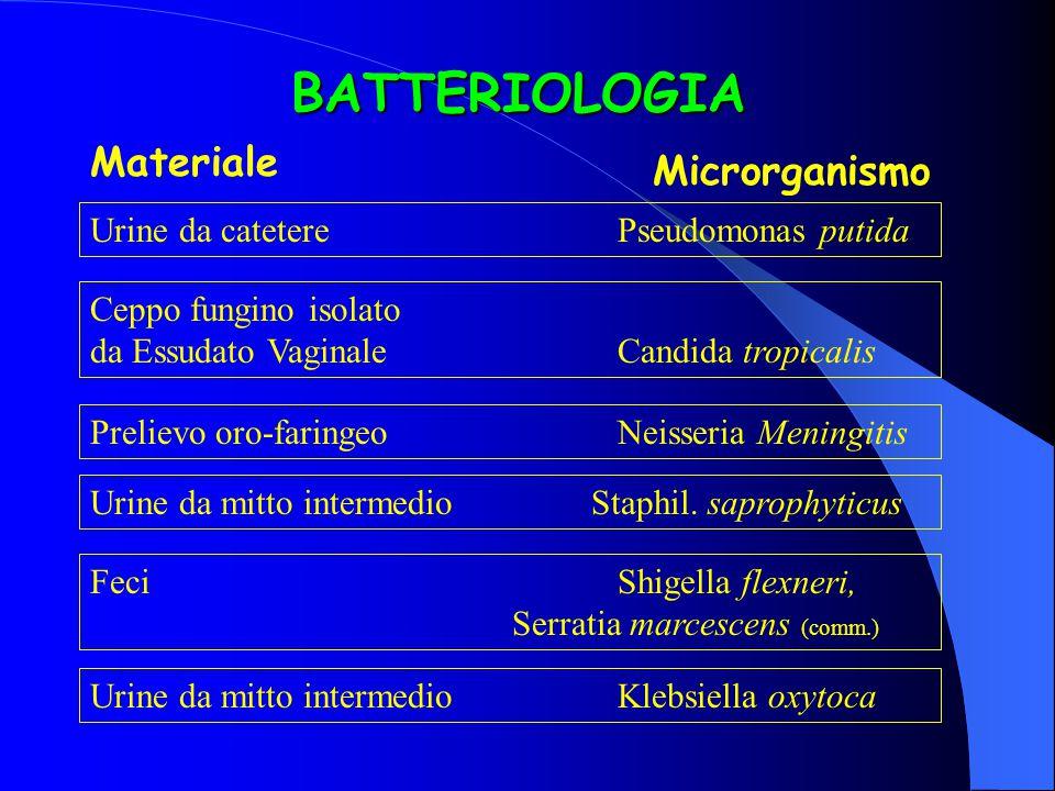 BATTERIOLOGIA Materiale Microrganismo Urine da cateterePseudomonas putida Ceppo fungino isolato da Essudato VaginaleCandida tropicalis Prelievo oro-faringeoNeisseria Meningitis Urine da mitto intermedio Staphil.