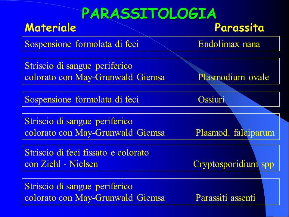 PARASSITOLOGIA MaterialeParassita Sospensione formolata di feciEndolimax nana Striscio di sangue periferico colorato con May-Grunwald Giemsa Plasmodiu