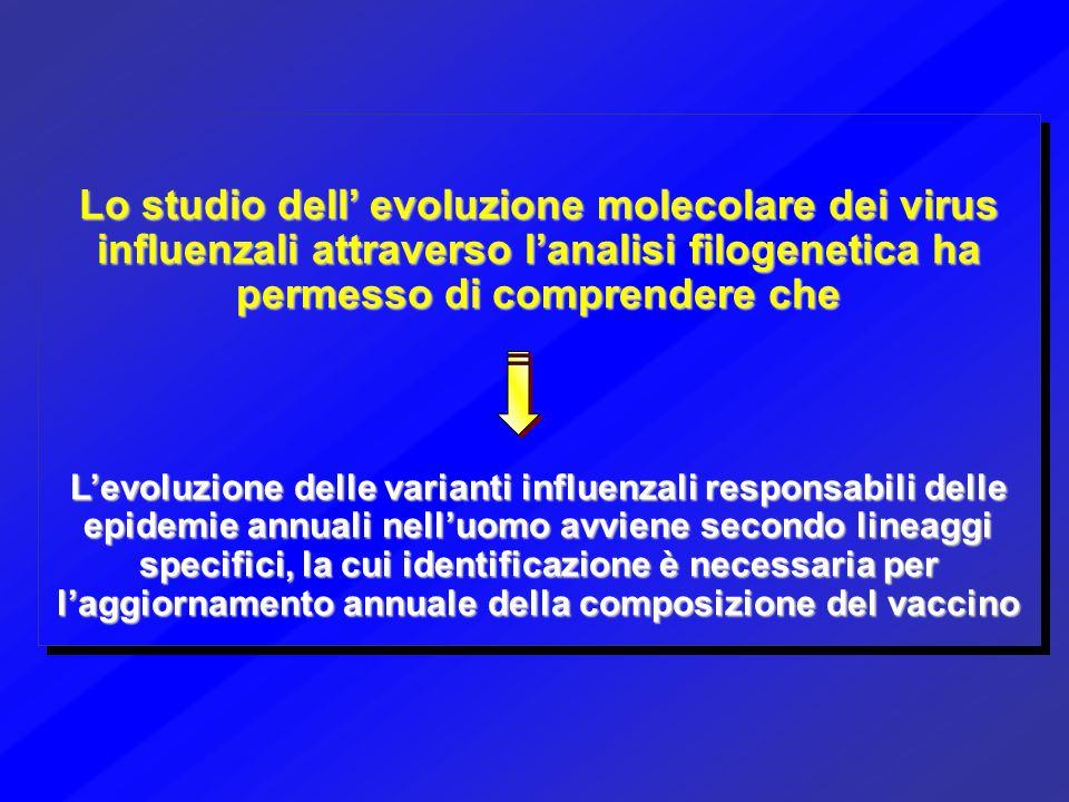Lo studio dell' evoluzione molecolare dei virus influenzali attraverso l'analisi filogenetica ha permesso di comprendere che L'evoluzione delle varian