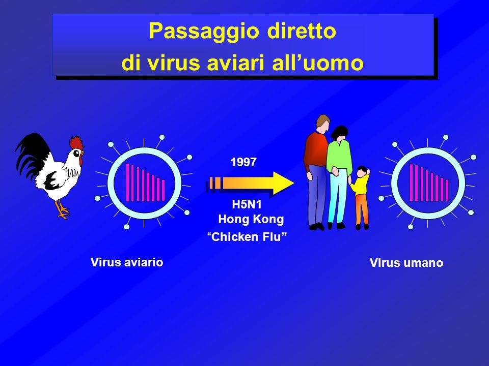 Virus aviario Virus umano 1997 H5N1 Hong Kong Passaggio diretto di virus aviari all'uomo Passaggio diretto di virus aviari all'uomo Chicken Flu