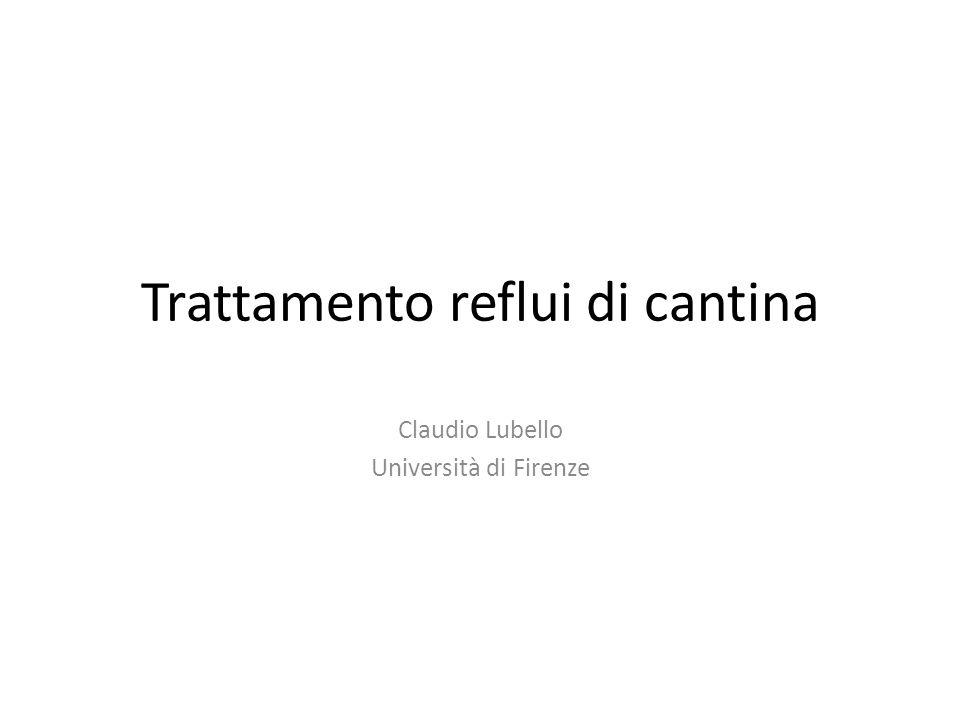 Trattamento reflui di cantina Claudio Lubello Università di Firenze