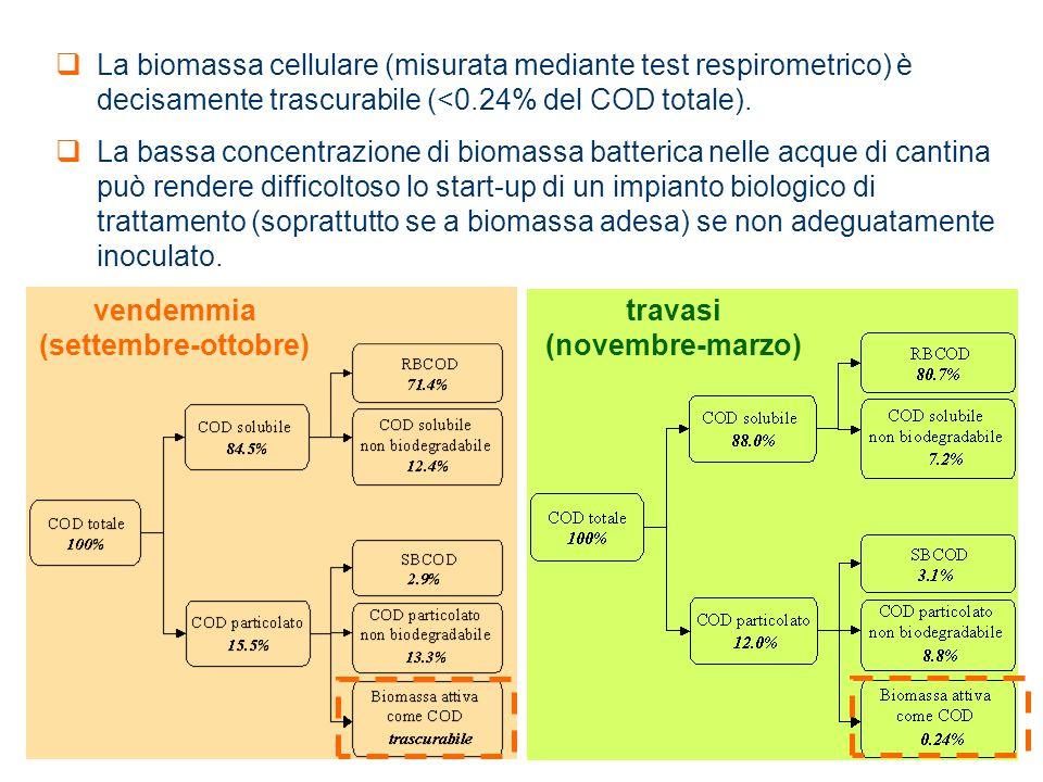 vendemmia (settembre-ottobre) travasi (novembre-marzo)  La biomassa cellulare (misurata mediante test respirometrico) è decisamente trascurabile (<0.