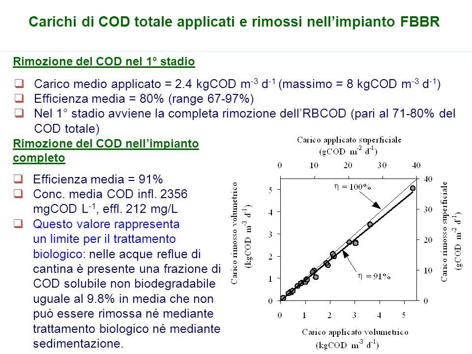 Carichi di COD totale applicati e rimossi nell'impianto FBBR  Carico medio applicato = 2.4 kgCOD m -3 d -1 (massimo = 8 kgCOD m -3 d -1 )  Efficienz