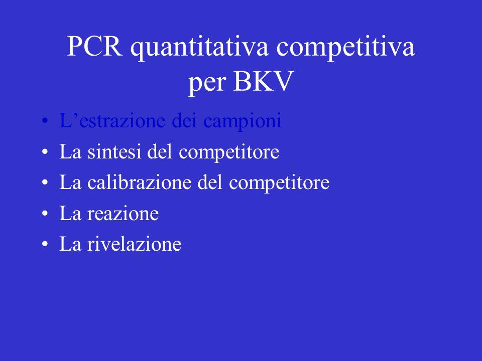 PCR quantitativa competitiva per BKV L'estrazione dei campioni La sintesi del competitore La calibrazione del competitore La reazione La rivelazione