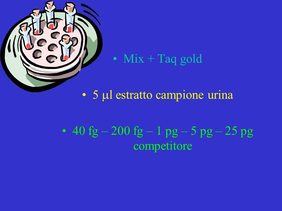 Mix + Taq gold 5  l estratto campione urina 40 fg – 200 fg – 1 pg – 5 pg – 25 pg competitore