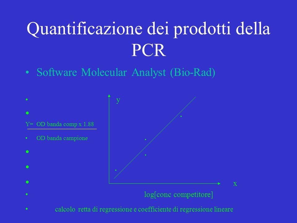 Quantificazione dei prodotti della PCR Software Molecular Analyst (Bio-Rad) y. Y= OD banda comp x 1.88 OD banda campione.. x log[conc competitore] cal