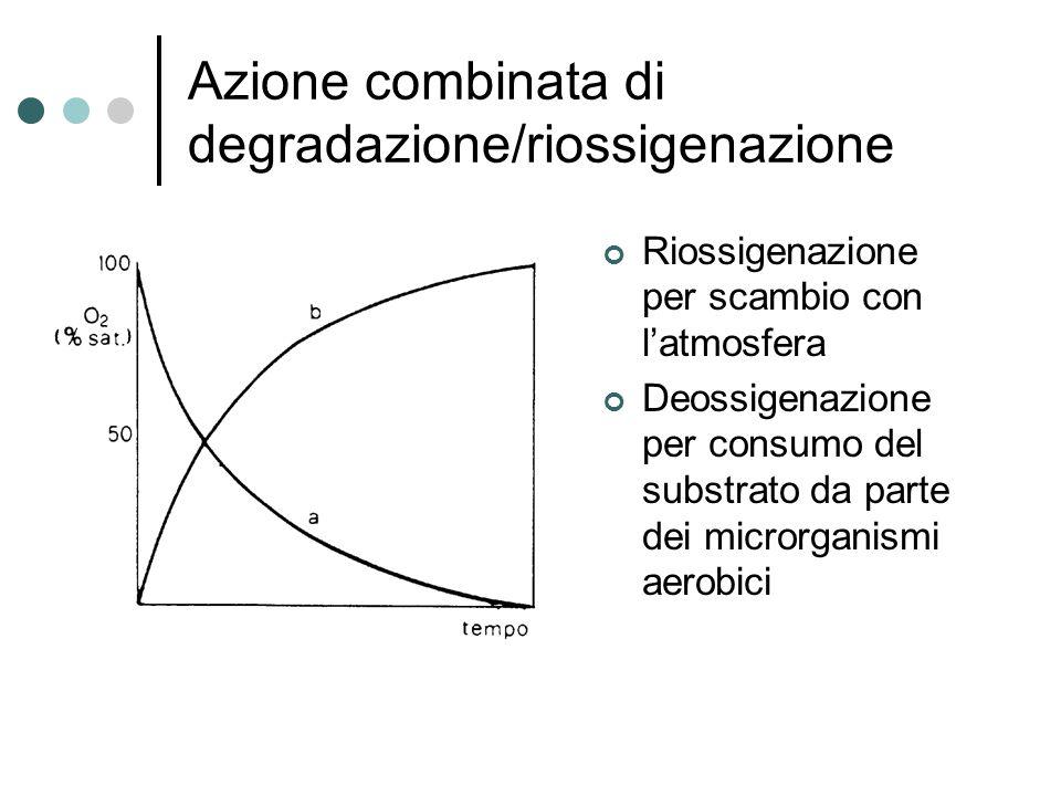 Azione combinata di degradazione/riossigenazione Riossigenazione per scambio con l'atmosfera Deossigenazione per consumo del substrato da parte dei microrganismi aerobici