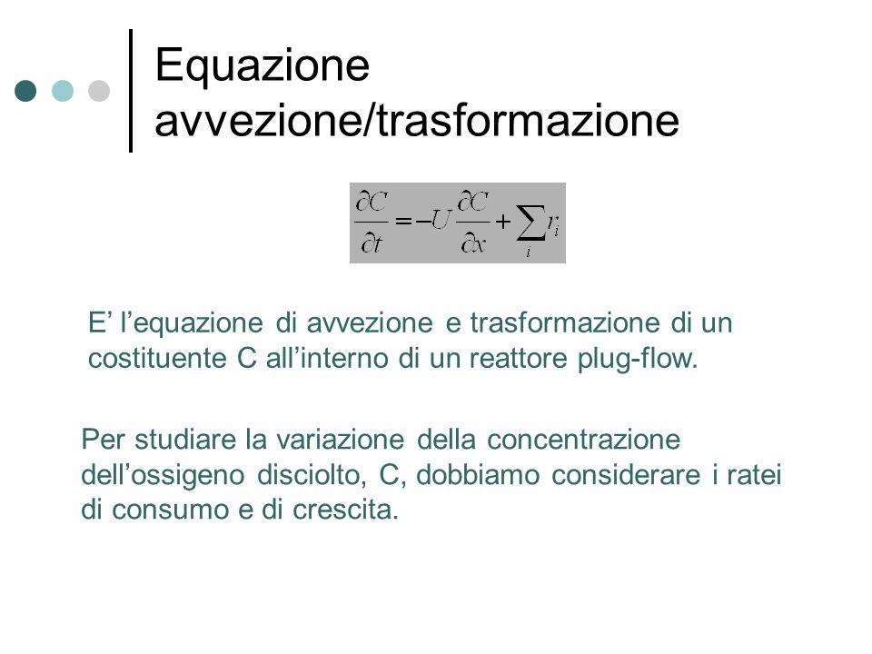 Equazione avvezione/trasformazione Per studiare la variazione della concentrazione dell'ossigeno disciolto, C, dobbiamo considerare i ratei di consumo e di crescita.