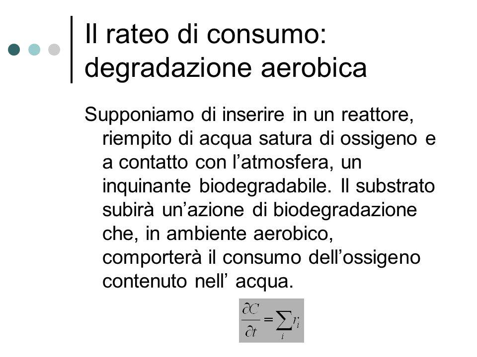 Il rateo di consumo: degradazione aerobica Supponiamo di inserire in un reattore, riempito di acqua satura di ossigeno e a contatto con l'atmosfera, un inquinante biodegradabile.