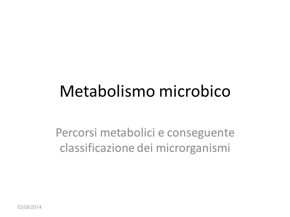 Metabolismo microbico Percorsi metabolici e conseguente classificazione dei microrganismi 03/09/2014