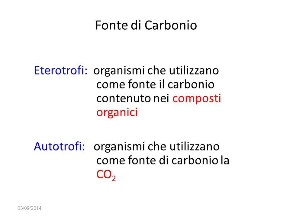 Fonte di Carbonio Eterotrofi: organismi che utilizzano come fonte il carbonio contenuto nei composti organici Autotrofi: organismi che utilizzano come