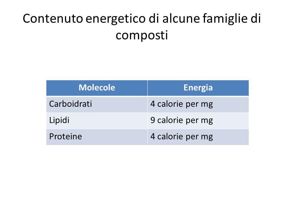 Contenuto energetico di alcune famiglie di composti MolecoleEnergia Carboidrati4 calorie per mg Lipidi9 calorie per mg Proteine4 calorie per mg