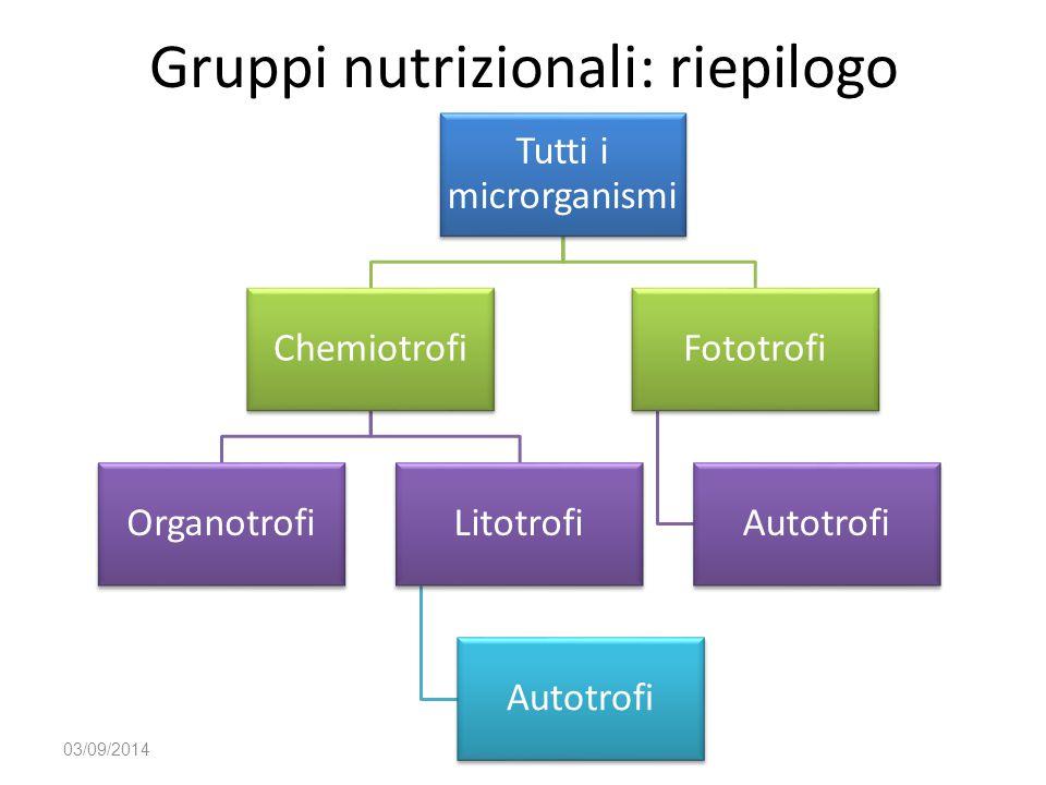 Gruppi nutrizionali: riepilogo 03/09/2014 Tutti i microrganismi Chemiotrofi OrganotrofiLitotrofi Autotrofi Fototrofi Autotrofi