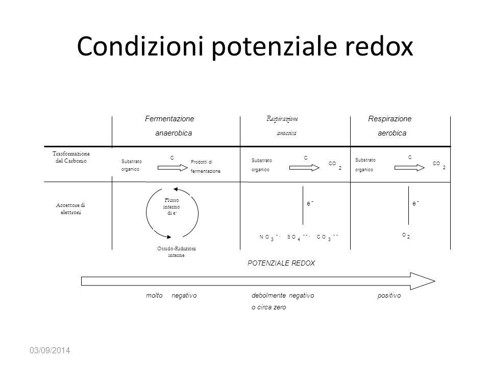 Condizioni potenziale redox 03/09/2014 CO 2 Substrato organico C NO 3 -, SO 4 --, CO 3 -- Respirazione anossica O 2 Respirazione aerobica Fermentazion