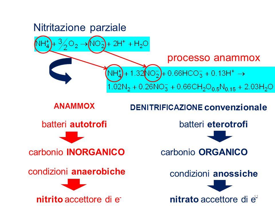 11 Nitritazione parziale processo anammox ANAMMOX DENITRIFICAZIONE convenzionale batteri autotrofibatteri eterotrofi carbonio INORGANICOcarbonio ORGAN