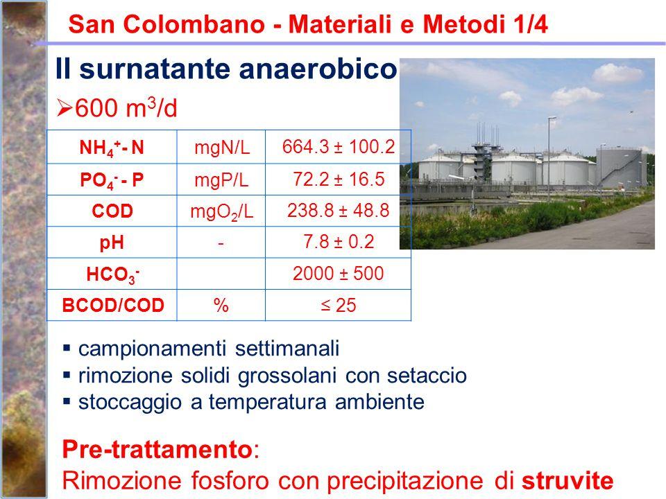 San Colombano - Materiali e Metodi 1/4  600 m 3 /d NH 4 + - NmgN/L664.3 ± 100.2 PO 4 - - PmgP/L72.2 ± 16.5 CODmgO 2 /L238.8 ± 48.8 pH-7.8 ± 0.2 HCO 3