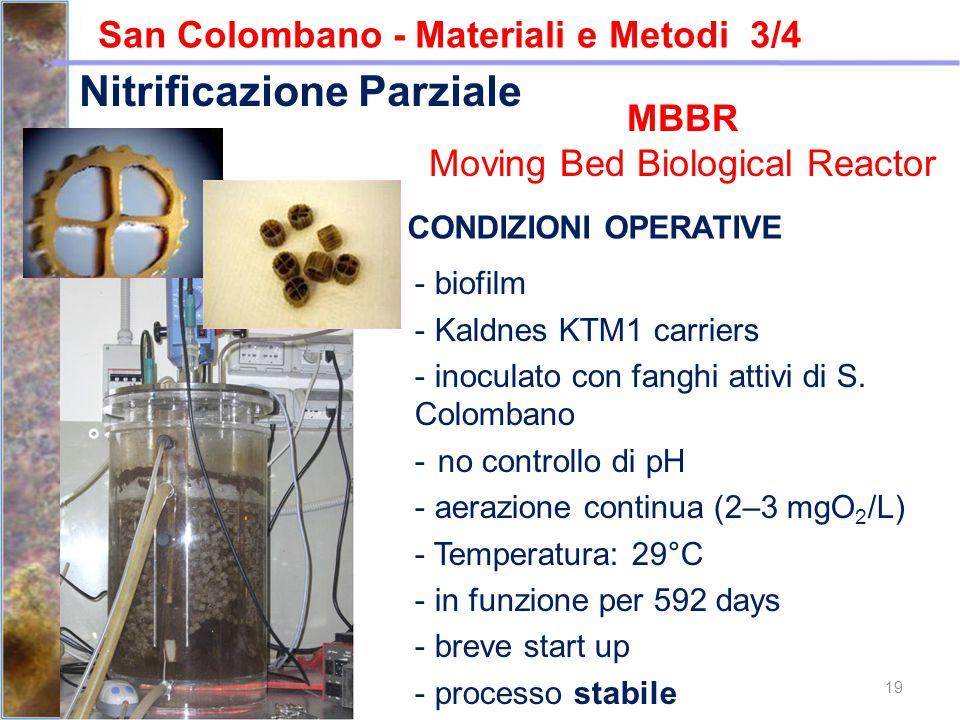 19 San Colombano - Materiali e Metodi 3/4 CONDIZIONI OPERATIVE - biofilm - Kaldnes KTM1 carriers - inoculato con fanghi attivi di S. Colombano - no co