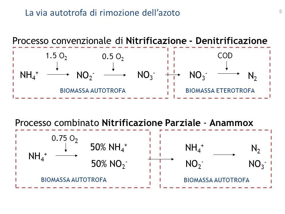 La via autotrofa di rimozione dell'azoto 8 Processo convenzionale di Nitrificazione - Denitrificazione NH 4 + NO 2 - 1.5 O 2 0.5 O 2 NO 3 - N2N2 COD B