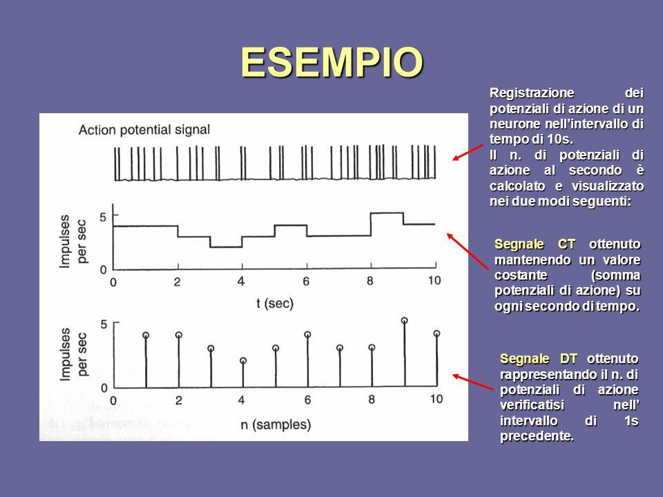 ESEMPIO Registrazione dei potenziali di azione di un neurone nell'intervallo di tempo di 10s. Il n. di potenziali di azione al secondo è calcolato e v