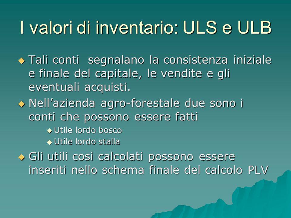 I valori di inventario: ULS e ULB  Tali conti segnalano la consistenza iniziale e finale del capitale, le vendite e gli eventuali acquisti.