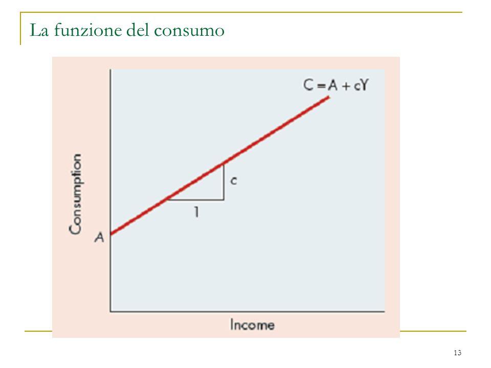 13 La funzione del consumo