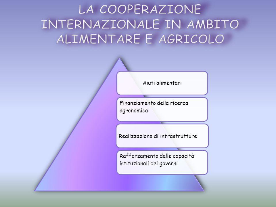 Aiuti alimentari Finanziamento della ricerca agronomica Realizzazione di infrastrutture Rafforzamento delle capacità istituzionali dei governi