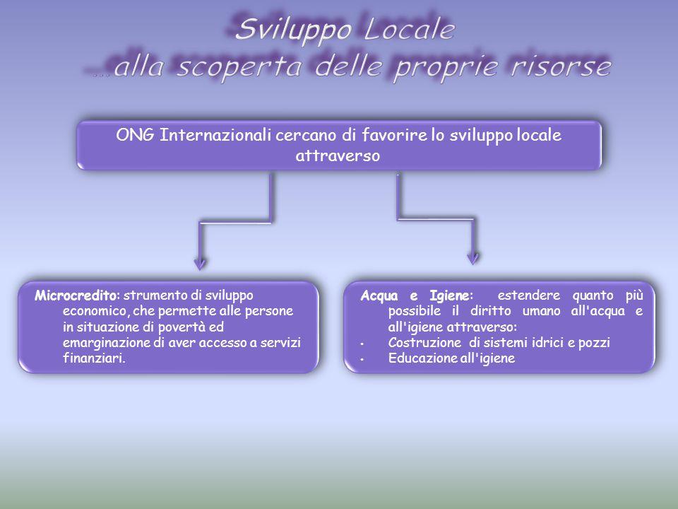 ONG Internazionali cercano di favorire lo sviluppo locale attraverso Microcredito: strumento di sviluppo economico, che permette alle persone in situazione di povertà ed emarginazione di aver accesso a servizi finanziari.
