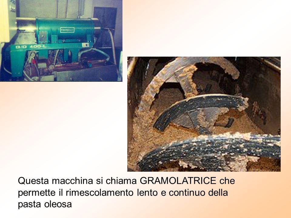 Questa macchina si chiama GRAMOLATRICE che permette il rimescolamento lento e continuo della pasta oleosa