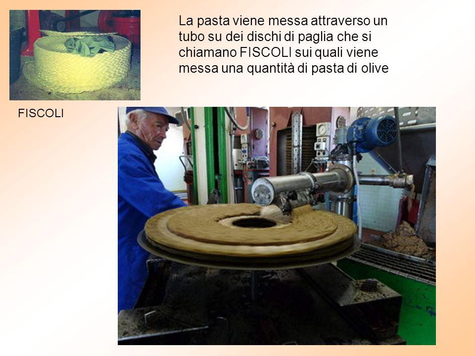 La pasta viene messa attraverso un tubo su dei dischi di paglia che si chiamano FISCOLI sui quali viene messa una quantità di pasta di olive FISCOLI