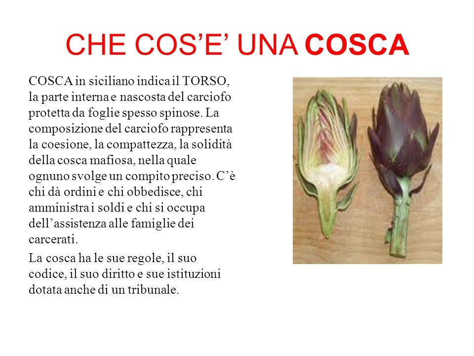 CHE COS'E' UNA COSCA COSCA in siciliano indica il TORSO, la parte interna e nascosta del carciofo protetta da foglie spesso spinose.