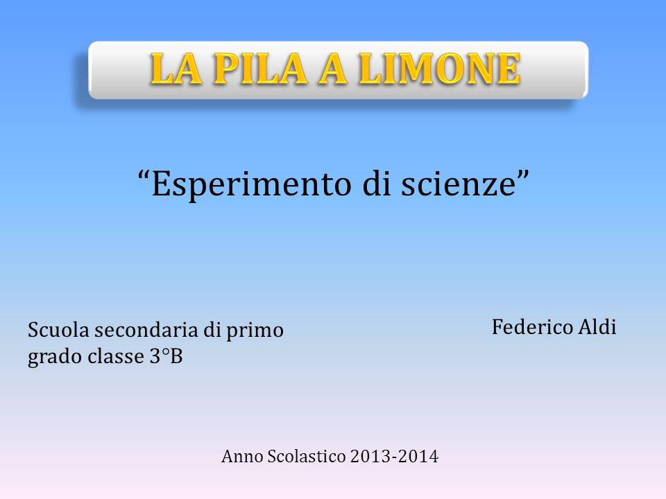 """Federico Aldi """"Esperimento di scienze"""" Anno Scolastico 2013-2014 Scuola secondaria di primo grado classe 3°B"""
