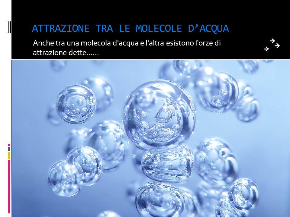 ADESIONE Questo fenomeno è spiegato dall'esistenza di forze di attrazione tra le molecole dell'acqua e le pareti del tubicino: tali forze sono dette f