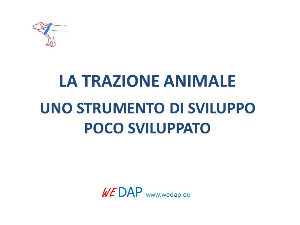LA TRAZIONE ANIMALE UNO STRUMENTO DI SVILUPPO POCO SVILUPPATO WE DAP www.wedap.eu