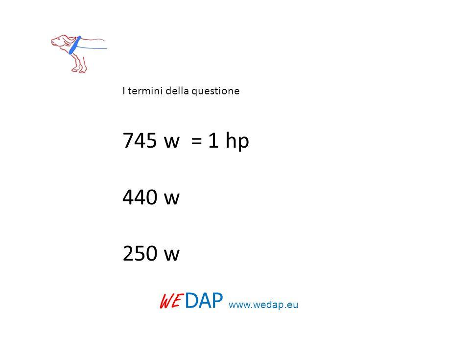 I termini della questione 745 w = 1 hp 440 w 250 w