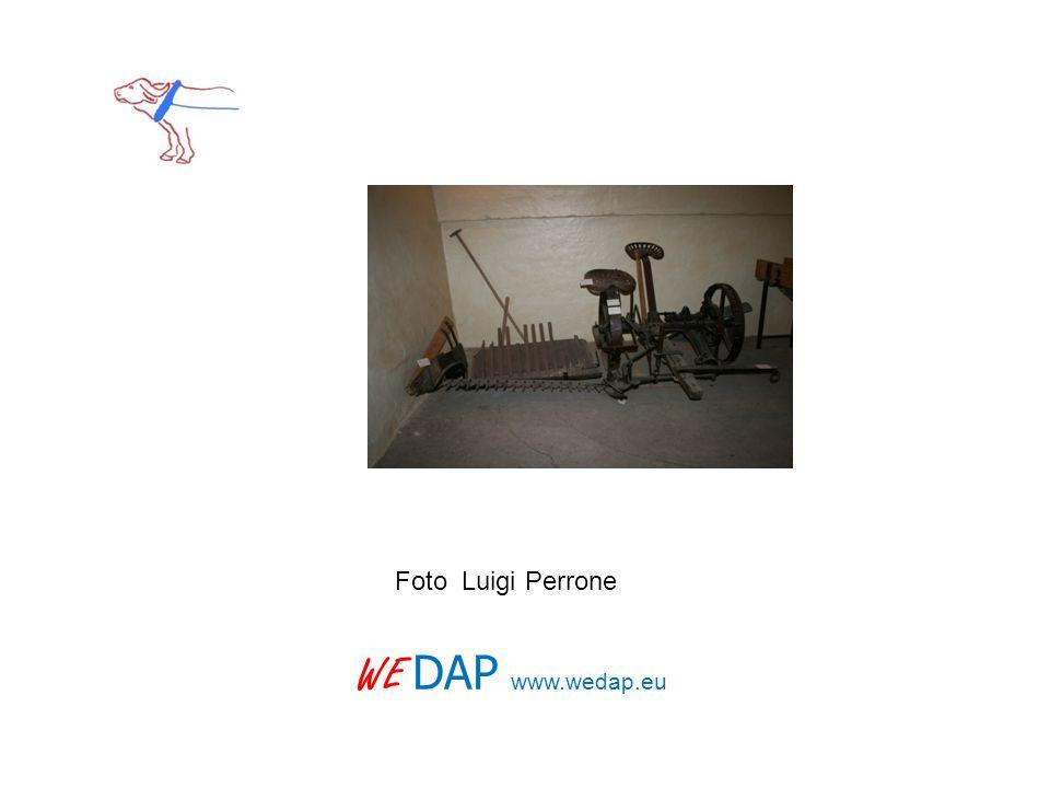 WE DAP www.wedap.eu Foto Luigi Perrone