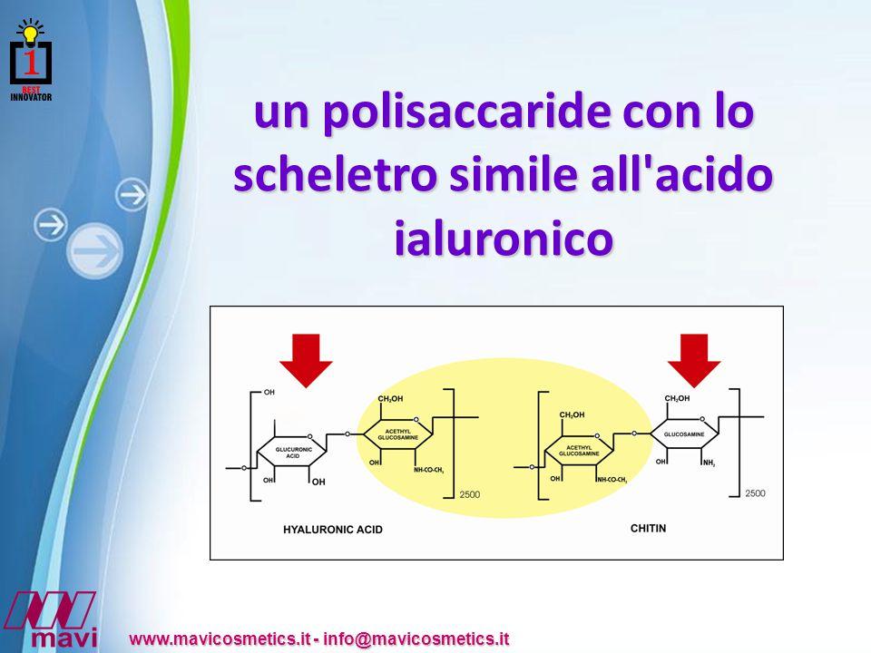 Powerpoint Templates www.mavicosmetics.it - info@mavicosmetics.it un polisaccaride con lo scheletro simile all acido ialuronico