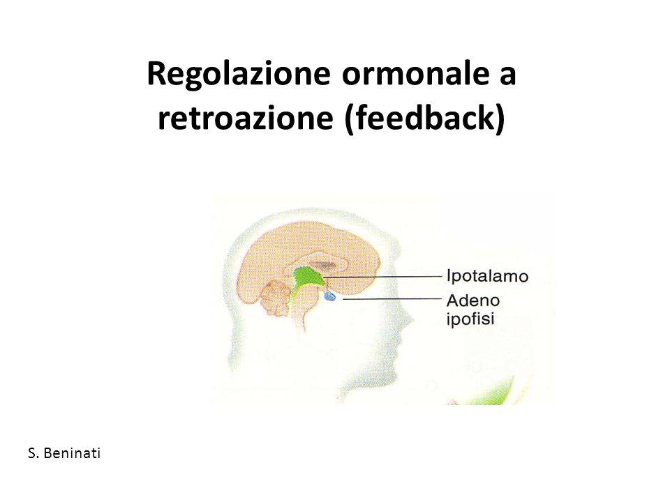 Regolazione ormonale a retroazione (feedback) S. Beninati