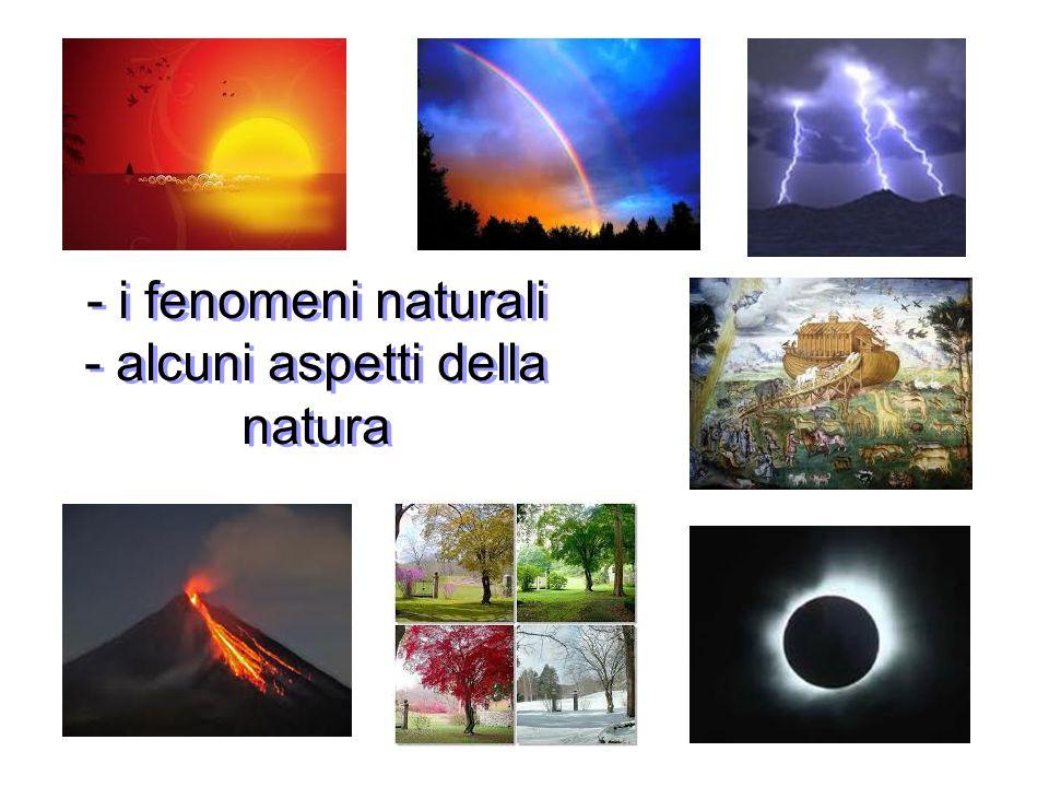 - i fenomeni naturali - alcuni aspetti della natura - i fenomeni naturali - alcuni aspetti della natura