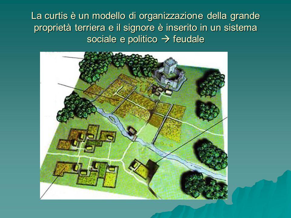 La curtis è un modello di organizzazione della grande proprietà terriera e il signore è inserito in un sistema sociale e politico  feudale