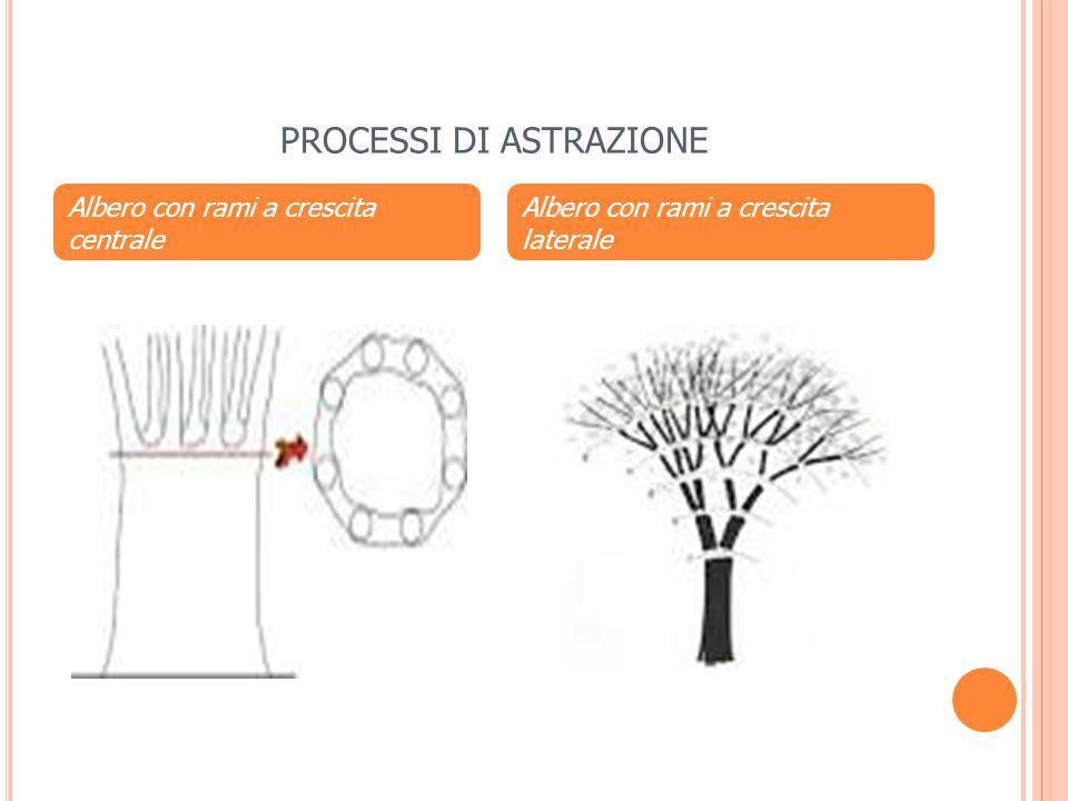 PROCESSI DI ASTRAZIONE Albero con rami a crescita centrale Albero con rami a crescita laterale