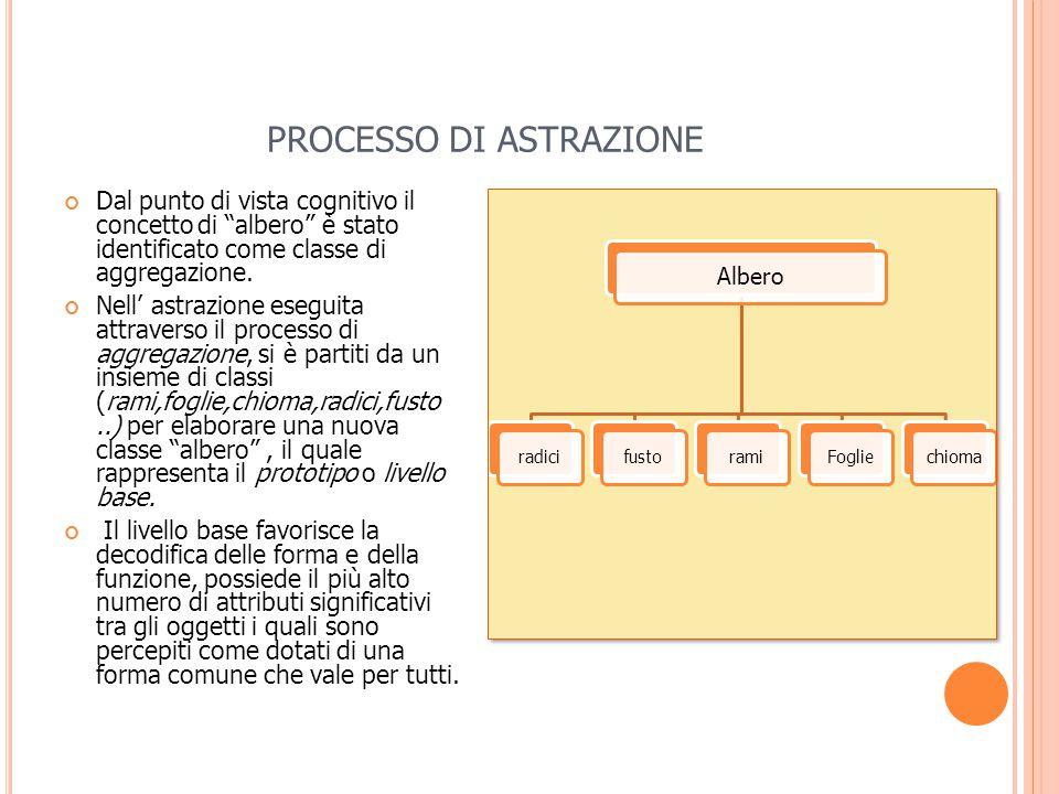 PROCESSO DI ASTRAZIONE Dal punto di vista cognitivo il concetto di albero è stato identificato come classe di aggregazione.