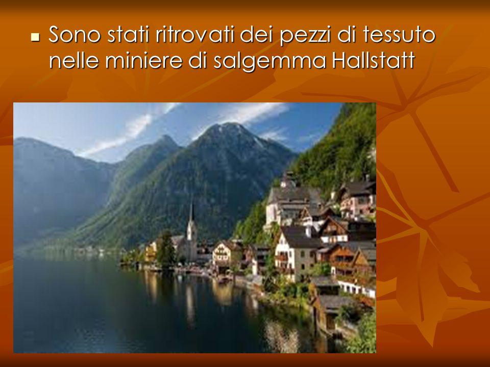 Sono stati ritrovati dei pezzi di tessuto nelle miniere di salgemma Hallstatt Sono stati ritrovati dei pezzi di tessuto nelle miniere di salgemma Hallstatt