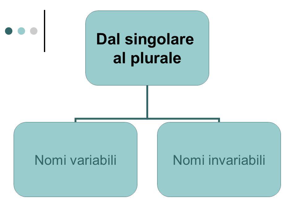 Dal singolare al plurale Nomi variabili Nomi invariabili