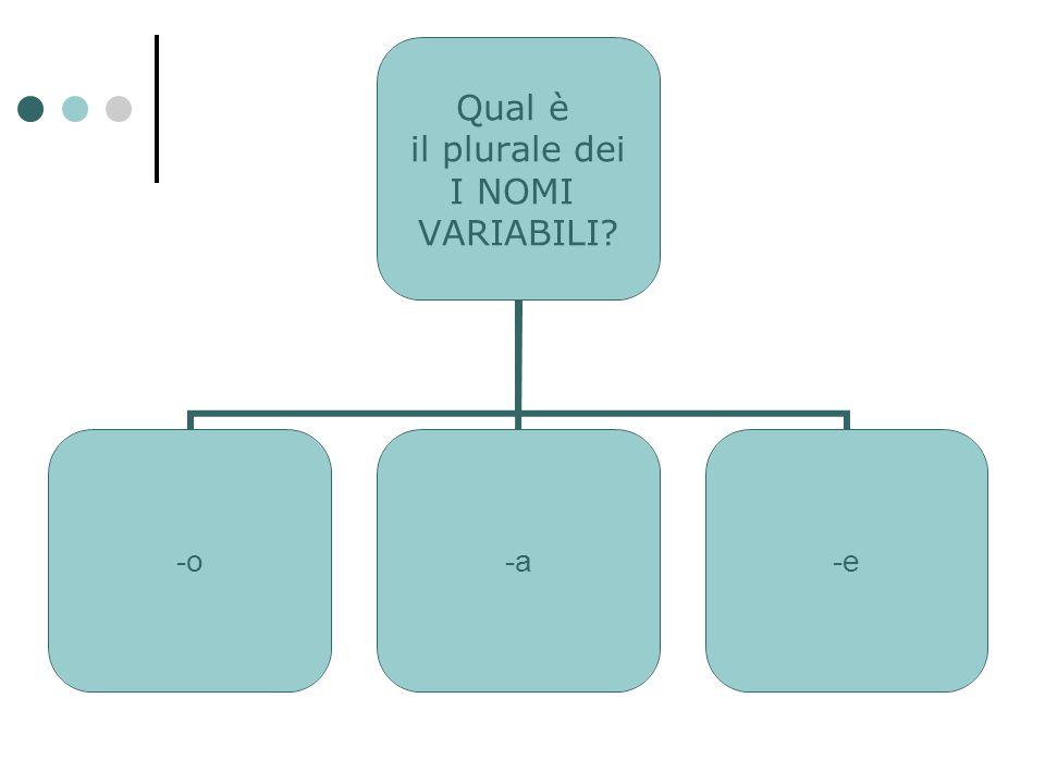 Qual è il plurale dei I NOMI VARIABILI? -o-a-e