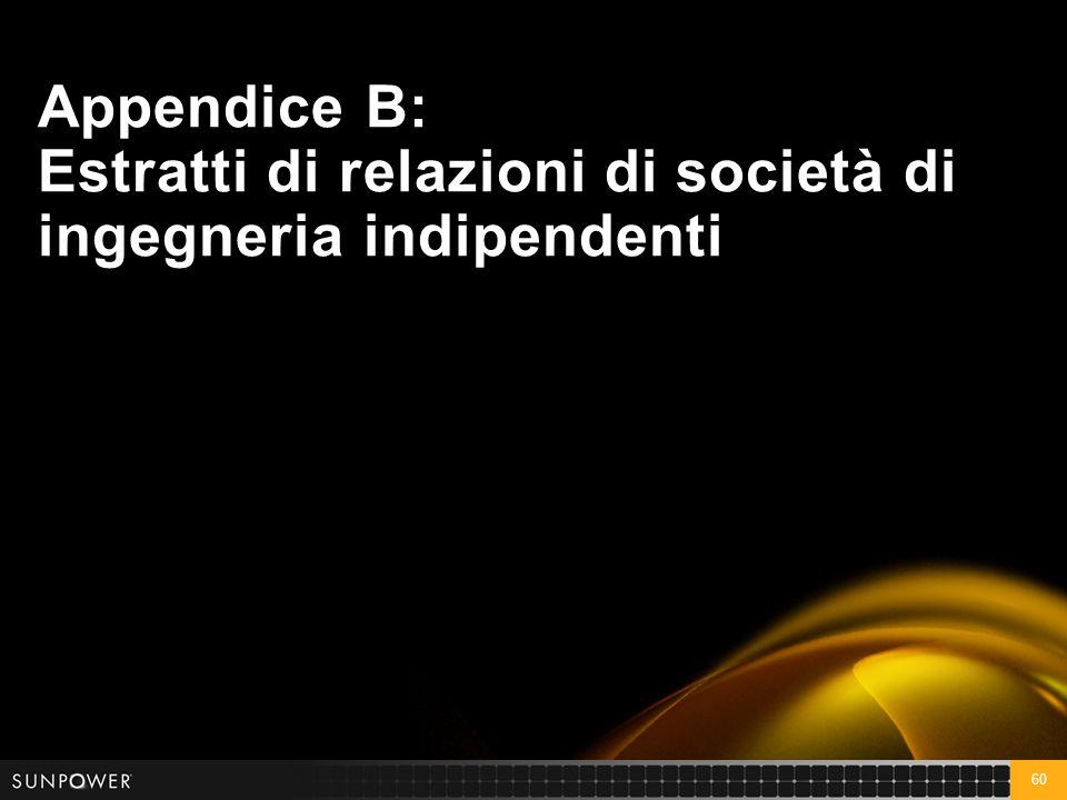 60 Appendice B: Estratti di relazioni di società di ingegneria indipendenti