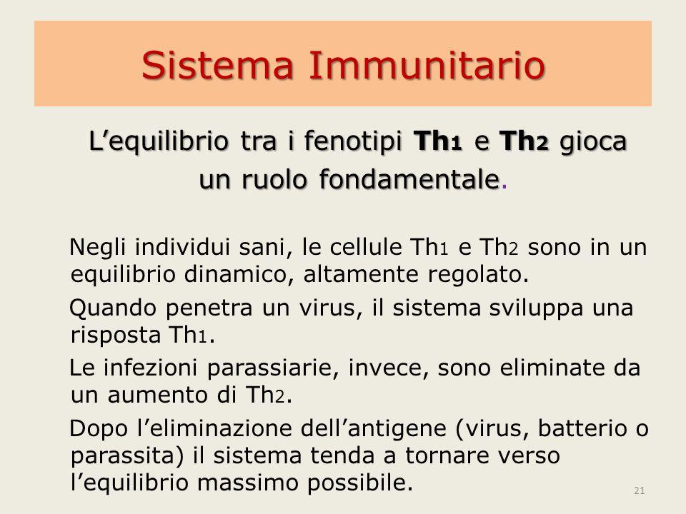 Sistema Immunitario L'equilibrio tra i fenotipi Th 1 e Th 2 gioca un ruolo fondamentale un ruolo fondamentale. Negli individui sani, le cellule Th 1 e