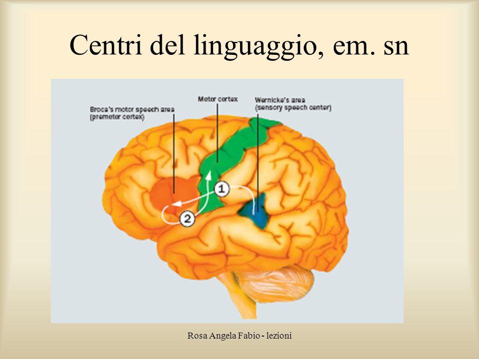 Rosa Angela Fabio - lezioni Centri del linguaggio, em. sn