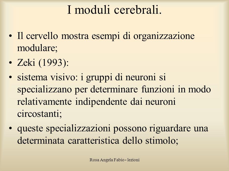 Rosa Angela Fabio - lezioni I moduli cerebrali. Il cervello mostra esempi di organizzazione modulare; Zeki (1993): sistema visivo: i gruppi di neuroni